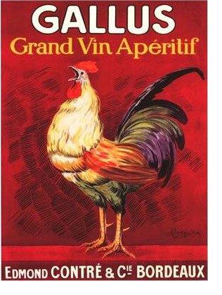 vin1.jpg